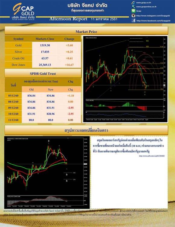 pdf1515657115264302397-2.jpg