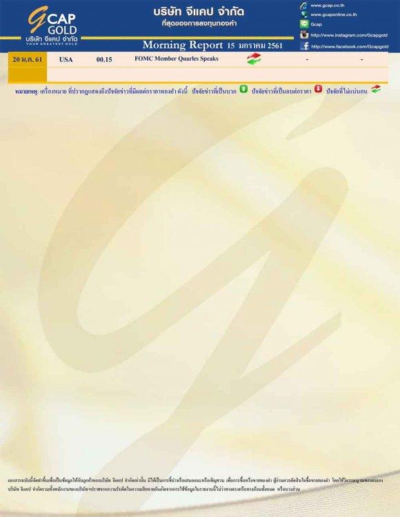 pdf15159771671541782792-5.jpg