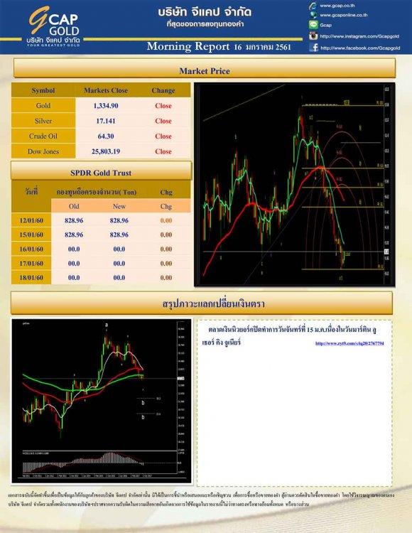 pdf1516064205750901145-2.jpg