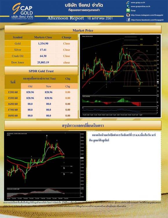 pdf1516089802925304843-2.jpg