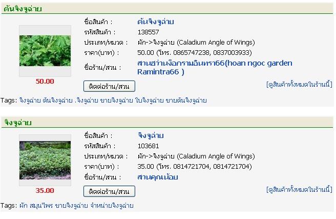 post-21-011159800%201309623793.jpg